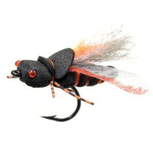 Project-Cicada (2)