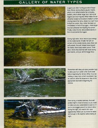 water types