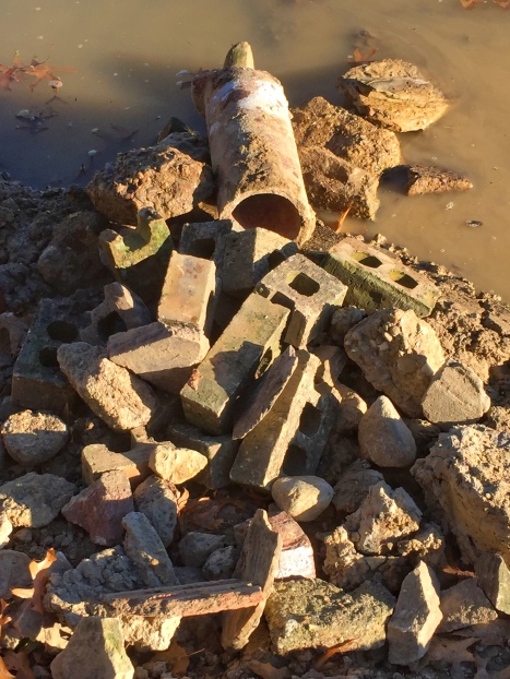 Deb had these great old fire bricks that should provide lots of little holes for the smaller fish along with some clay pipe.